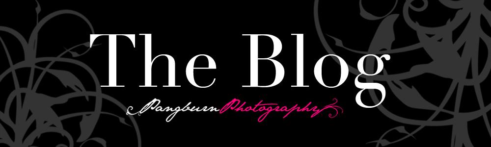 Pangburn Photography: Blog
