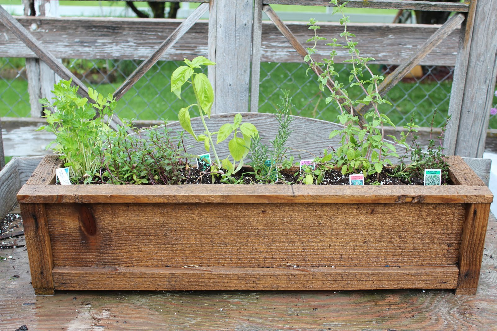 You Can Order Your Patio Herb Garden Today By Calling Tonya (801)318 3431  Or Shelley (801)318 4657. Orders Available Only While Supplies Last.