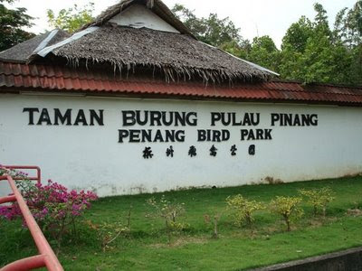 Penang Bird Park- Paradise for the Ornithologists!