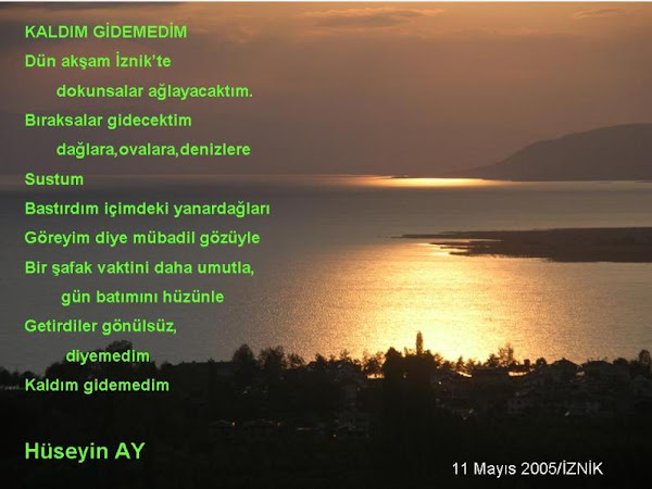 043- KALDIM GİDEMEDİM