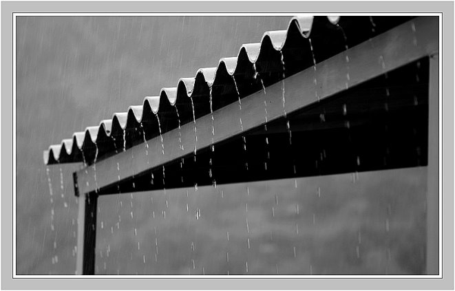 205 - Yağmur