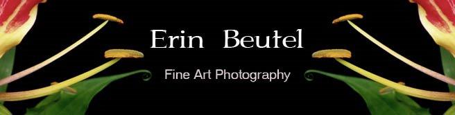 Erin Beutel