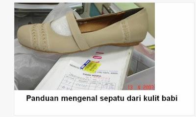 panduan mengenal sepatu dari kulit babi