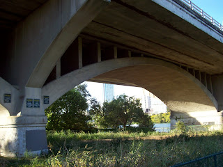 The Bat Bridge! view of underside, by the water