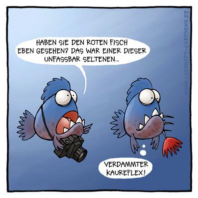 Piranhas seltener roter Fisch Fotograf Foto machen fotografieren Tierfotograf Unterwasserfotografie verfressen Appetit Hunger Cartoon Cartoons Witze witzig witzige lustige Bildwitze Bilderwitze Comic Zeichnungen lustig Karikatur Karikaturen Illustrationen Michael Mantel lachhaft Spaß Humor