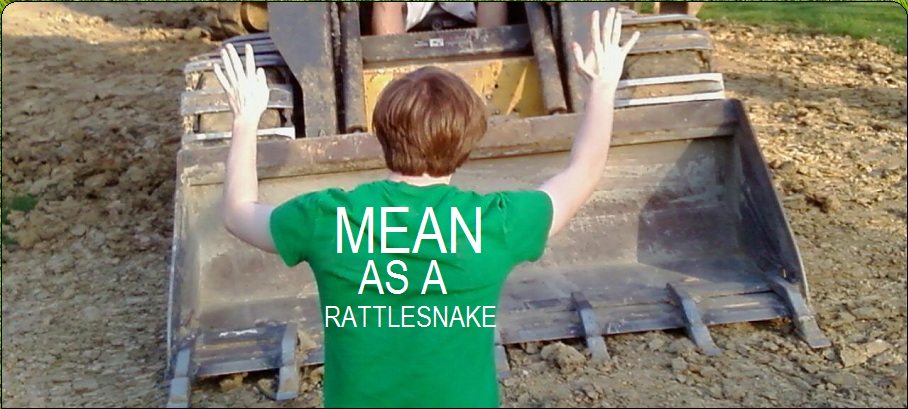 Mean As A Rattlesnake