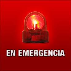 PERROS EN EMERGENCIA
