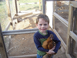 Patrick(my great nephew) with his pet chicken