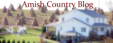 Amish Country Blog