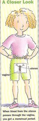 cartoon vagina utereus