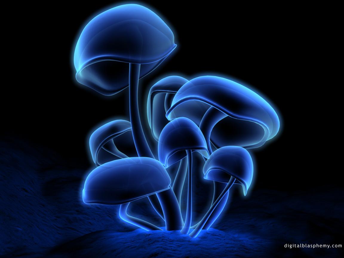 Cogumelo 3D | Ilha dos Papeis