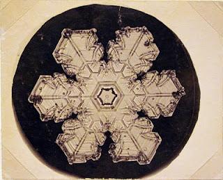 fotomiografia10 feita por wilson a bentley de um floco de neve_cristal de neve