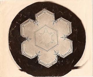 fotomiografia4 feita por wilson a bentley de um floco de neve_cristal de neve