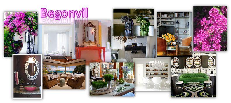 Begonvil - Ev dekorasyon ve tasarımı...