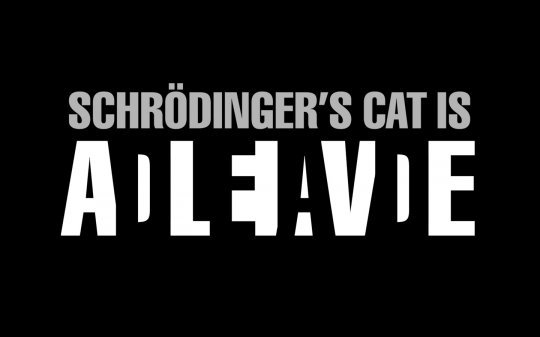 El Gato de Schrödinger - Mención en The Big Bang Theory