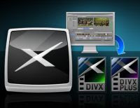 codec mkv avi divx