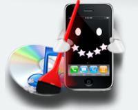 libreria iTunes organizzata