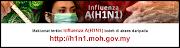 info H1N1