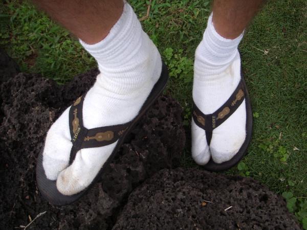 25141-socks_sandals_opinion%5B1%5D.jpg