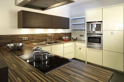 modern furniture: new kitchens collection 2009kicheconcept