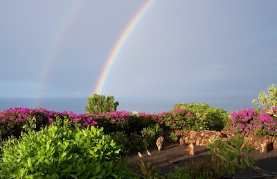 Garden with Double Rainbow