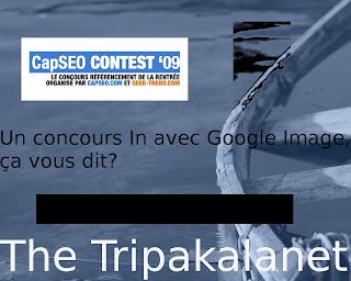 Le fond d'écran Trikapalanet