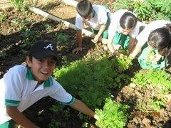 Blog Niños Del Triunfo