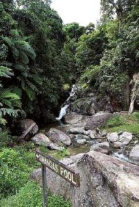 Time for a dip: This waterfall is one of the scenic points on the way up to the resort.