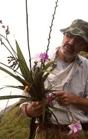 Common but precious: Dr Jaap Vermeulen with wild orchids found at many roadsides in Cameron Highlands.