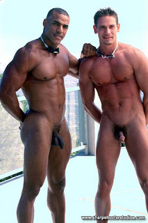 Latin gay sex pics