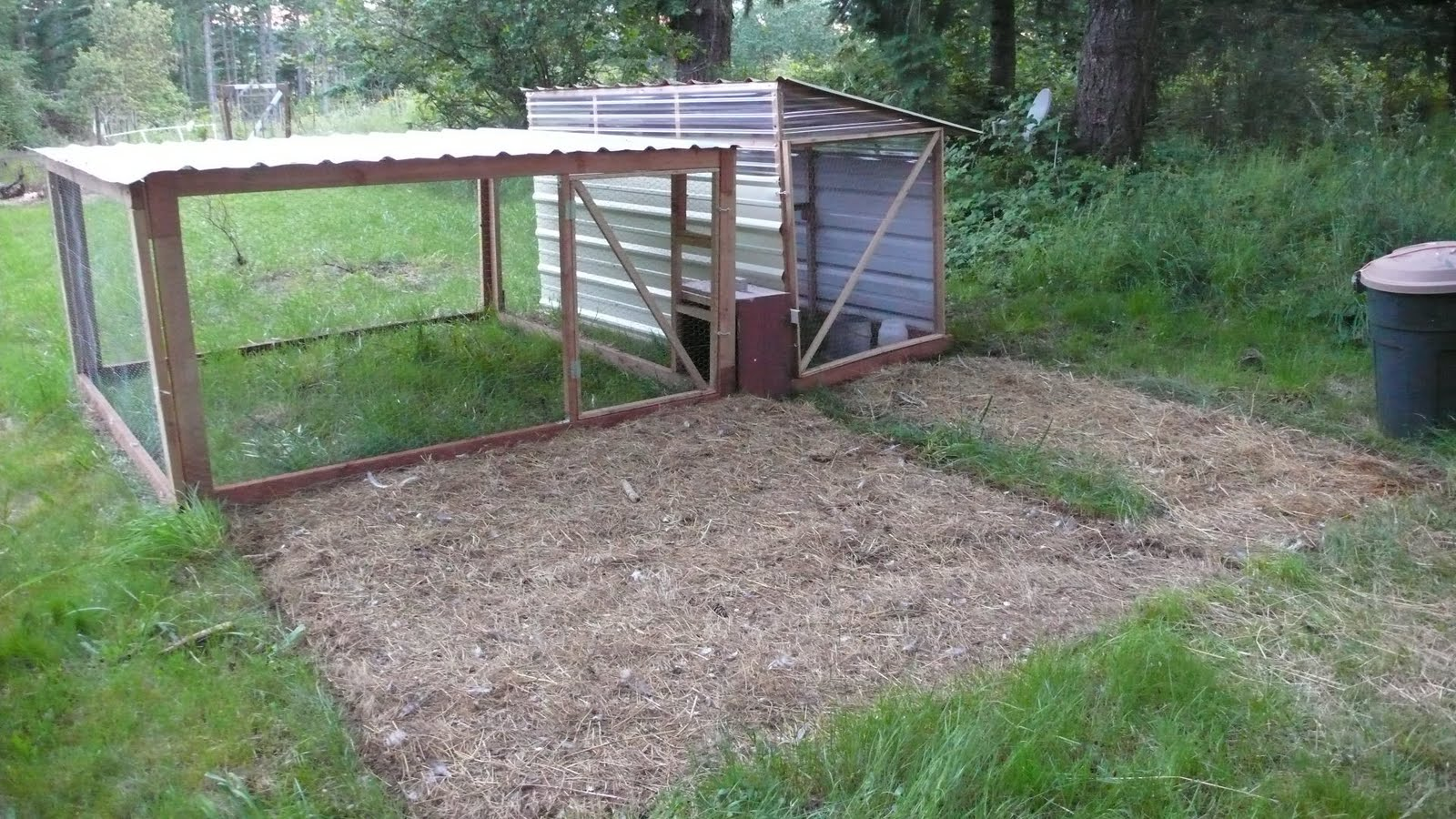 the reluctant homesteaders revisiting the chicken tractor debate