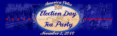 Providing Support to Election Day Tea Party