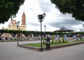 Lugar donde nacio Juventino Rosas