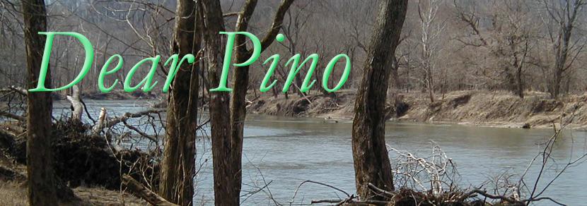 Dear Pino