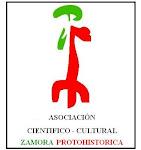 Asociacion Cientifico Cultural Zamoraprotohistorica