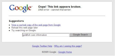 Custom Domain Name Problem - DNS Error page most bloggers seen today when visiting their blogs