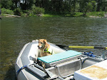 Scout floats the Salmon River, Idaho