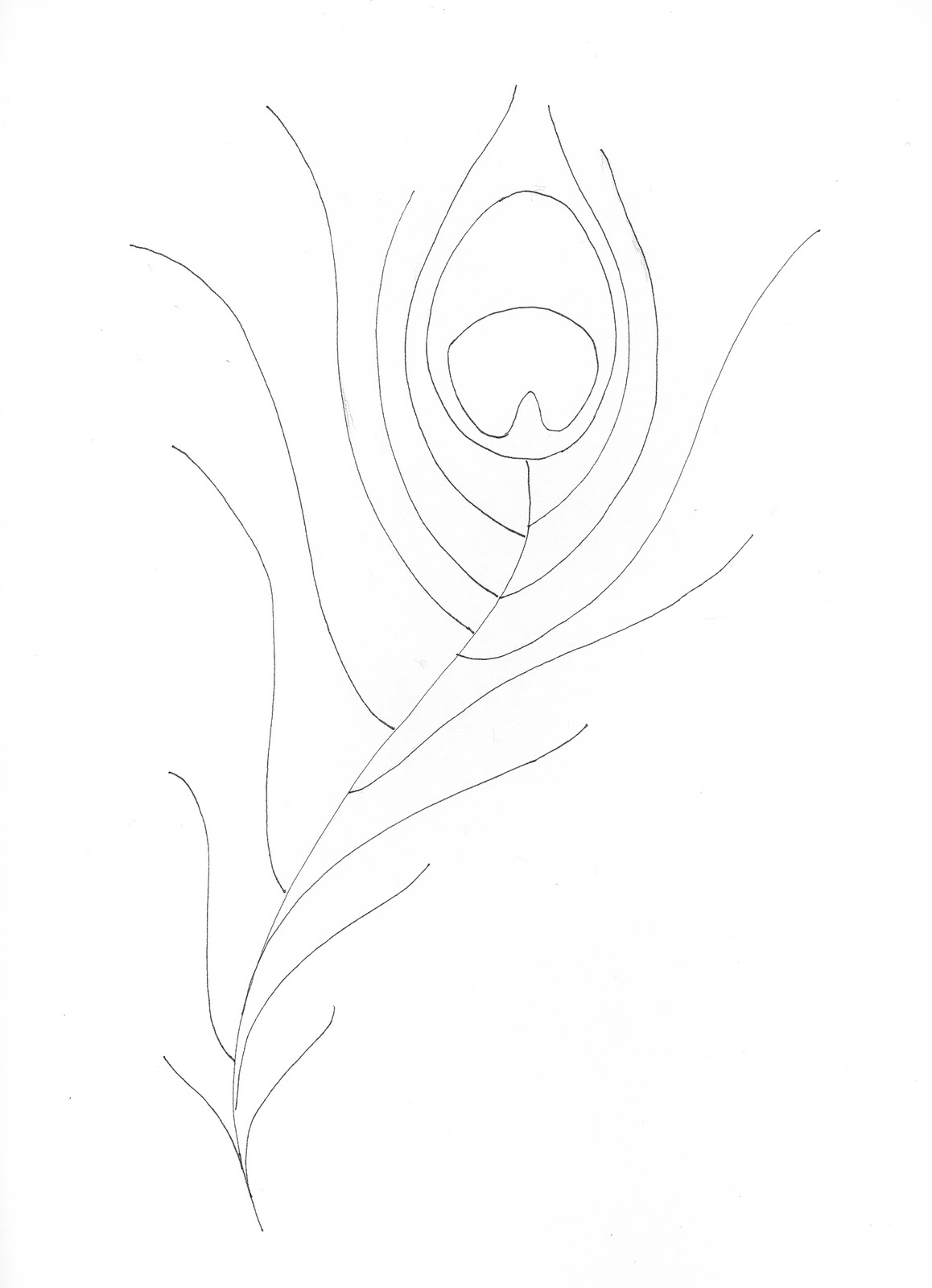 how to draw a simple peacock feather