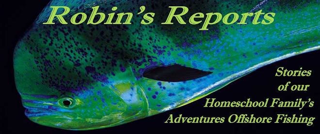 Robin's Reports
