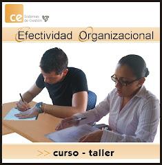 CURSO TALLER EFECTIVIDAD ORGANIZACIONAL
