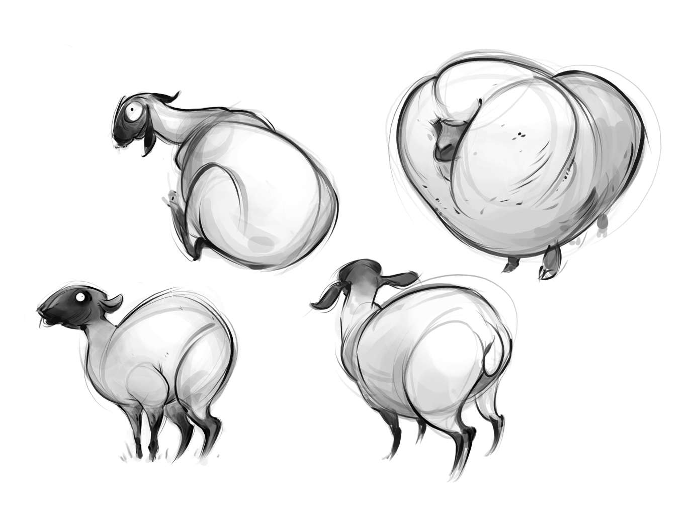 how to draw a sheep tumblr