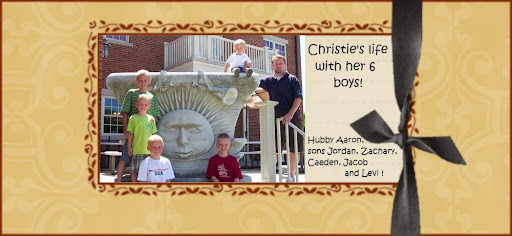 Christie's life with her 6 boys