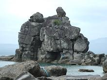 Apo Island--Dauin, NegOr