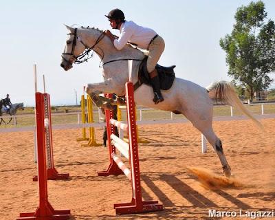 Guega foca preparação nos Jogos Equestres Mundiais
