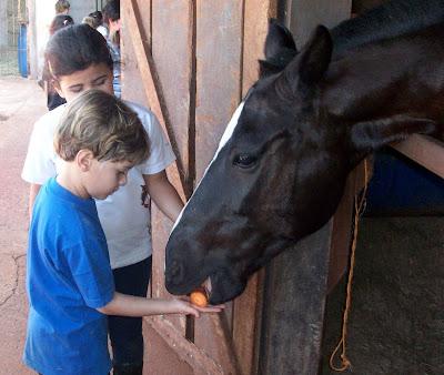 """No recesso escolar é hora de se divertir no curso """"Férias a Cavalo"""""""
