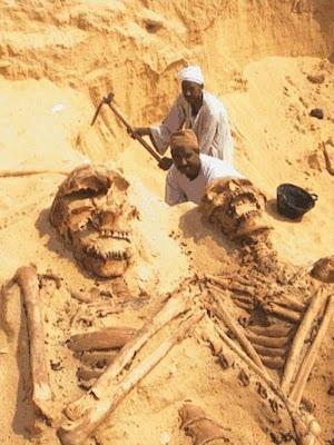 Fósiles humanos gigantes