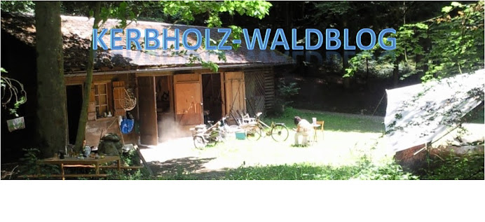 KerbHolz-Waldblog