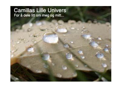 Camillas lille univers