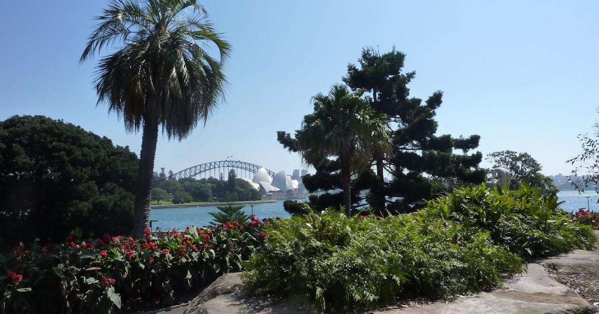 Exterior Visions Garden Design Blog Royal Botanic Gardens Sydney