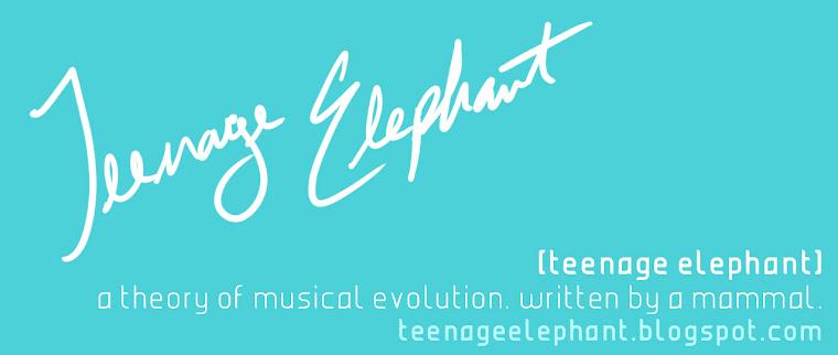 Teenage Elephant